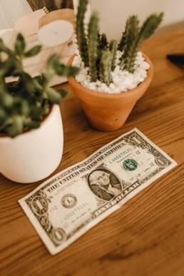 spend-money-dollars